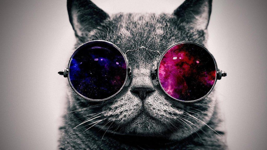 MusikHolics - Sunglasses
